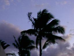La isla del viento