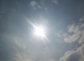 Los viernes al sol